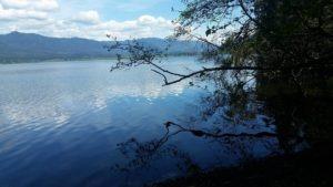 Quinault Lake Washington~subject to copyright